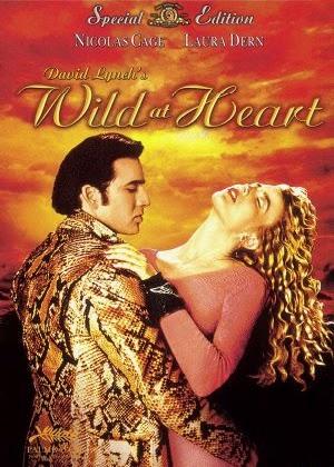 Trái Tim Hoang Dã -  Wild at Heart