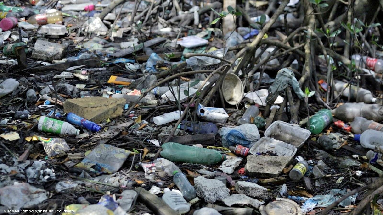 O plástico e o isopor são os materiais em maior volume nos manguezais.