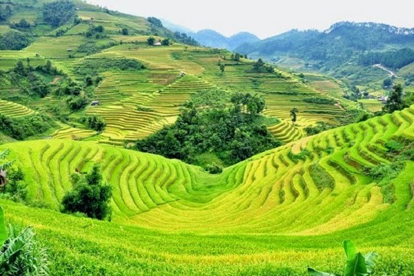 Sapa - Su Pan - Ban Ho - Nam Toong - Thanh Phu by bus 2 days trip