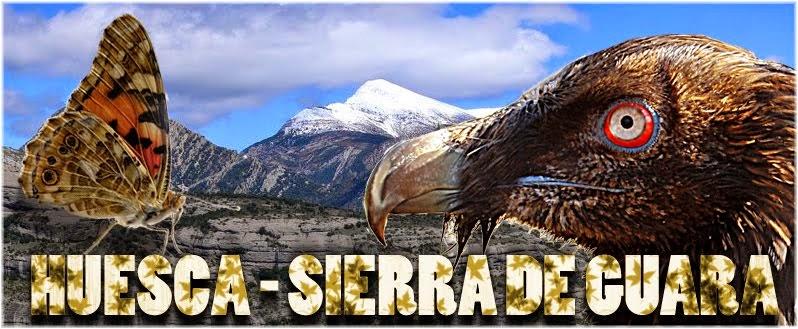HUESCA-SIERRA DE GUARA