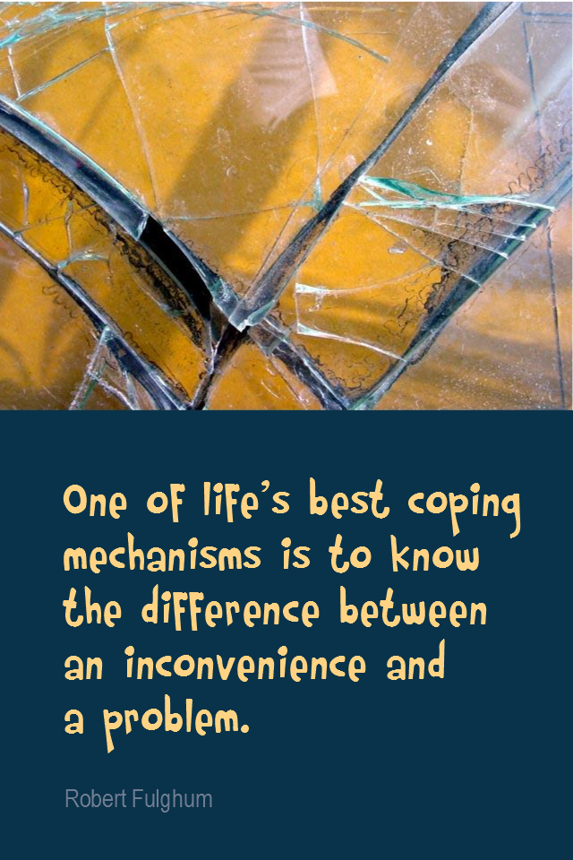 visual quote - image quotation for PROBLEMS - One of life's best coping mechanisms is to know the difference between an inconvenience and a problem. - Robert Fulghum