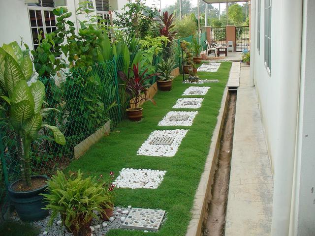 landskap taman mini rumah related keywords landskap