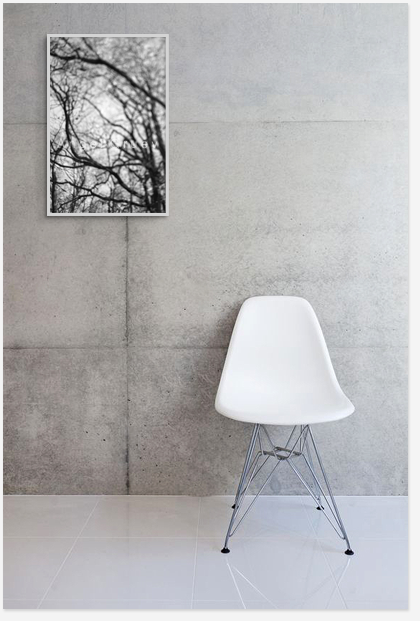 Picture for decor,fine art photo print for decoration