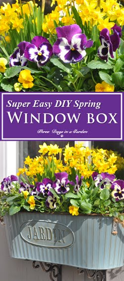 Super Easy DIY Window box