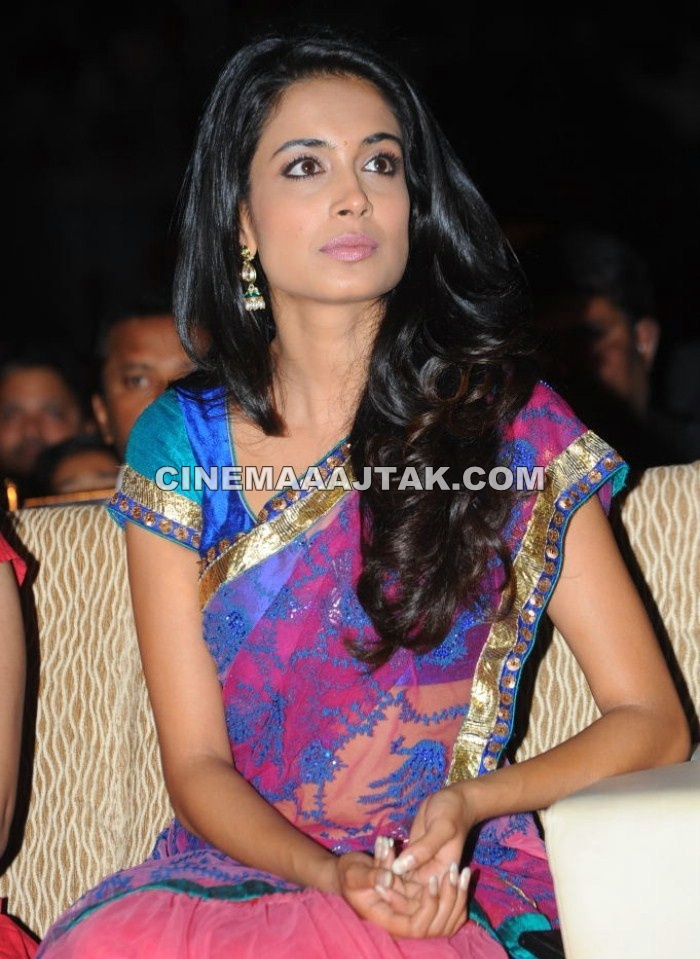 1 - Sarah Jane Dias At Panjaa Movie Audio Launch New Images