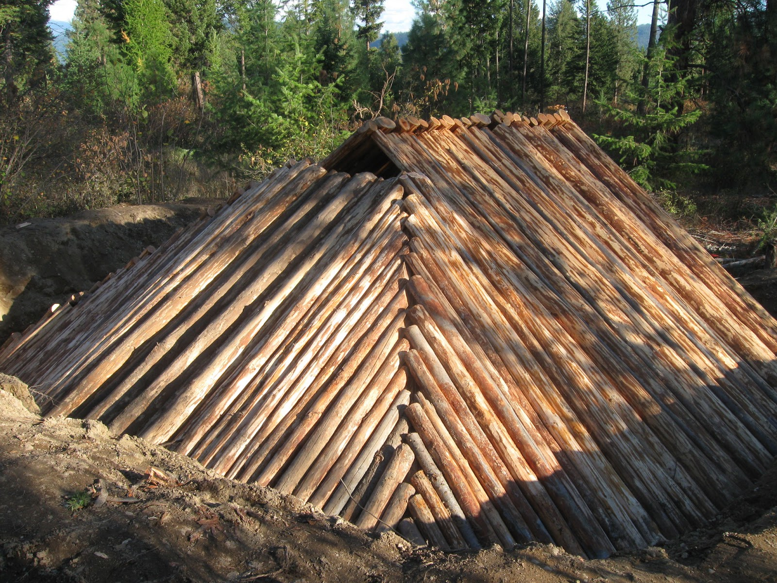 Earth Survival Shelters