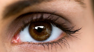 Makanan Ini Mampu Menjaga Kesehatan Mata Anda