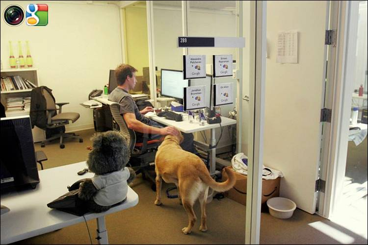 Google Working Conditions