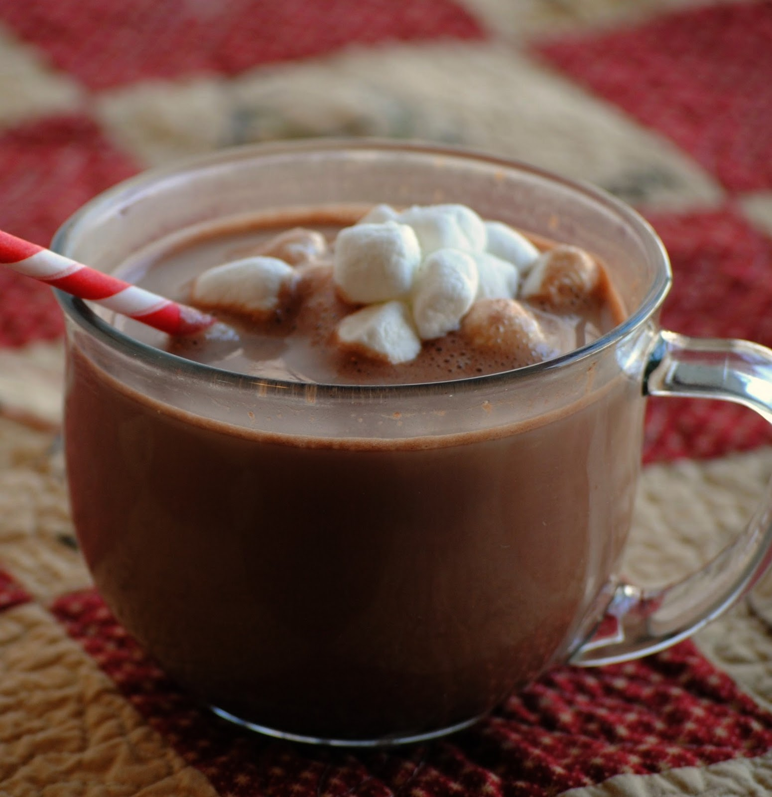 Homemade Hot Chocolate Mix With White Chocolate Chips
