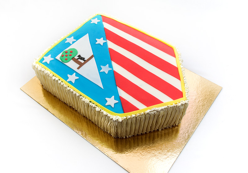 Athletico de madrid cake side front