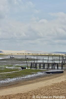 Le Bassin d'Arcachon à marée basse, vue du Cap Ferret