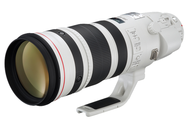 NEW Canon EF 200-400mm f/4L IS USM