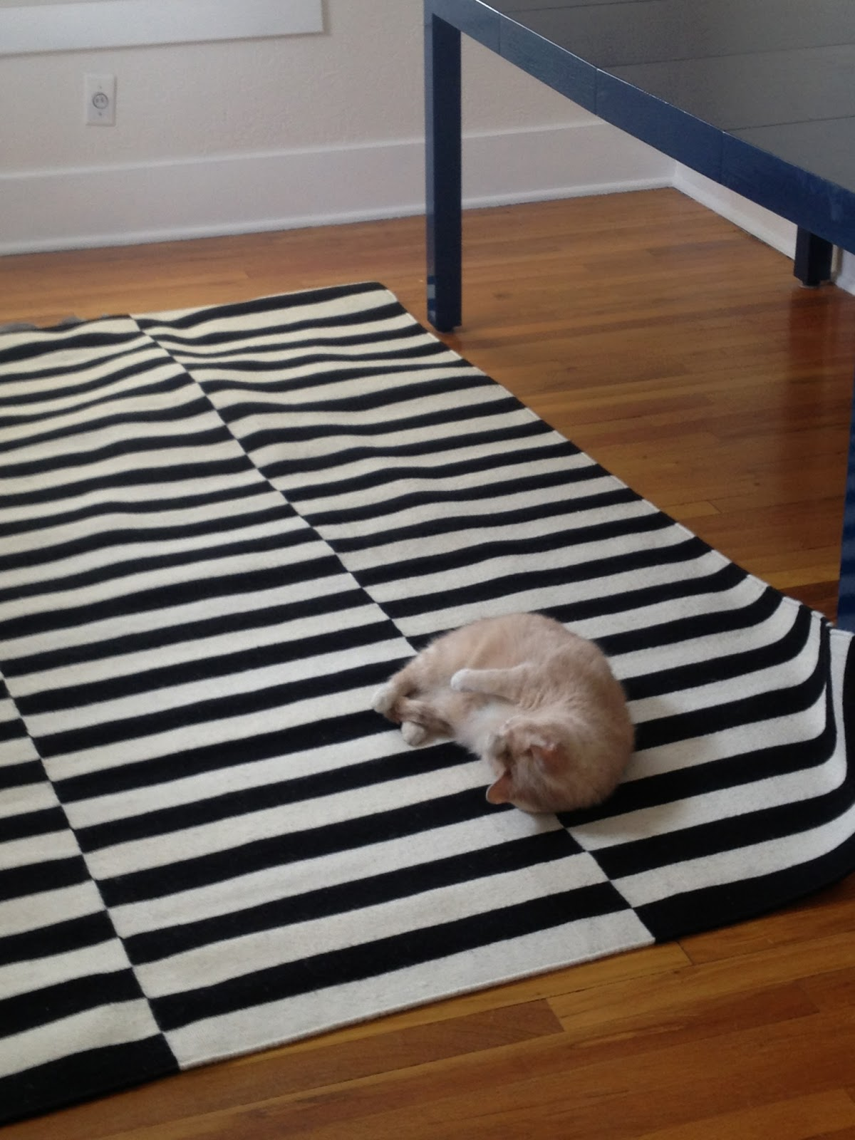 Ikea dining room 2013 - I Returned The Way Too Big Rug And Bought The Smaller Size I Was Really Happy Because I Love This Rug But Kitty Loves It Even More