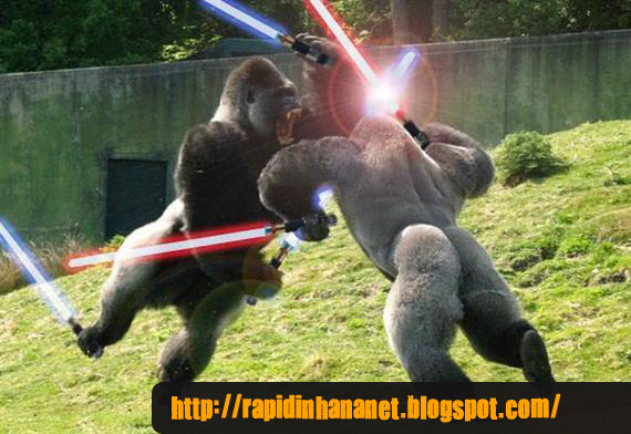 Flash - briga   201 pica de Gorilas Gorillas Fighting With Lightsabers
