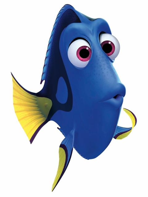 Lizzie 39 s finding nemo blog dory for Picture of dory fish