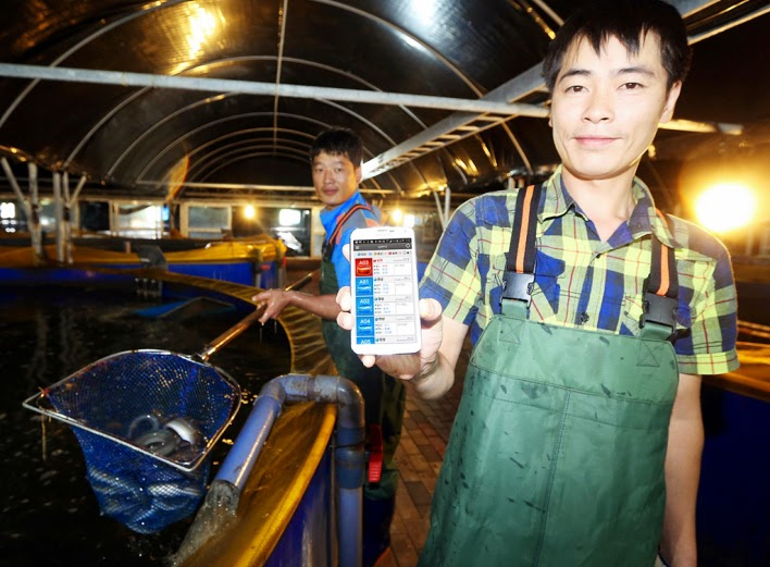 http://www.ibtimes.co.uk/internet-eels-korean-company-develops-smart-fish-farm-1463694