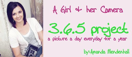 Amanda's 365 Project