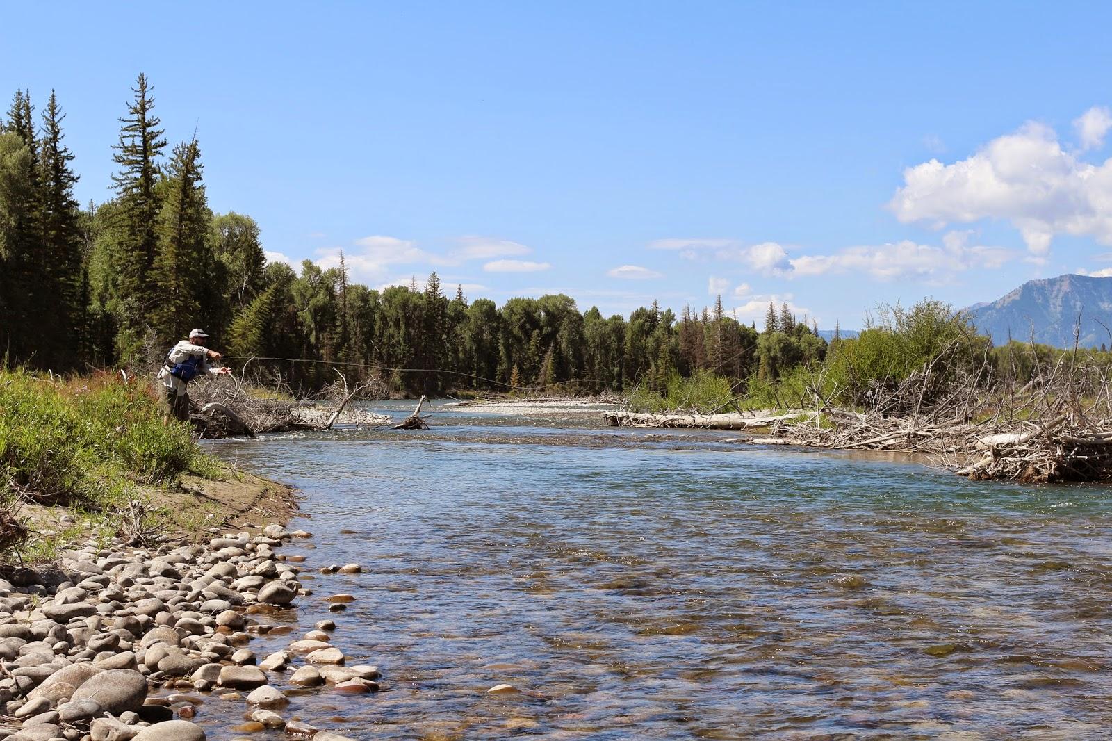 Jay scott outdoors jackson hole wyoming pics 8 for Snake river fly fishing