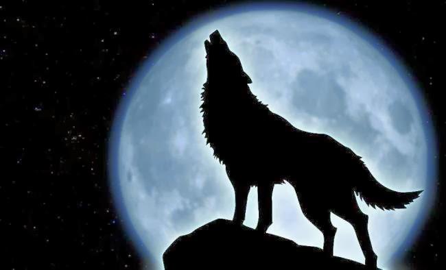 Blask księżyca zmienia wszystko