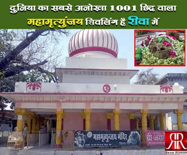 rewa-shiv-lingam-is-the-world-most-unique-1001-holes-here-in-दुनिया का सबसे अनोखा 1001 छिद्र वाला शिवलिंग है यहां