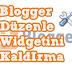 Blogger Düzenle(Wrech) İkonunu Kaldırma