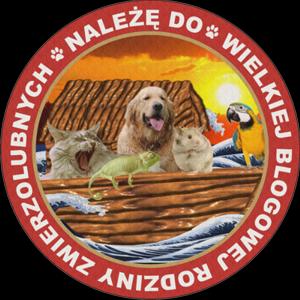 Spis zwierzakolubnych u Anki Wrocławianki
