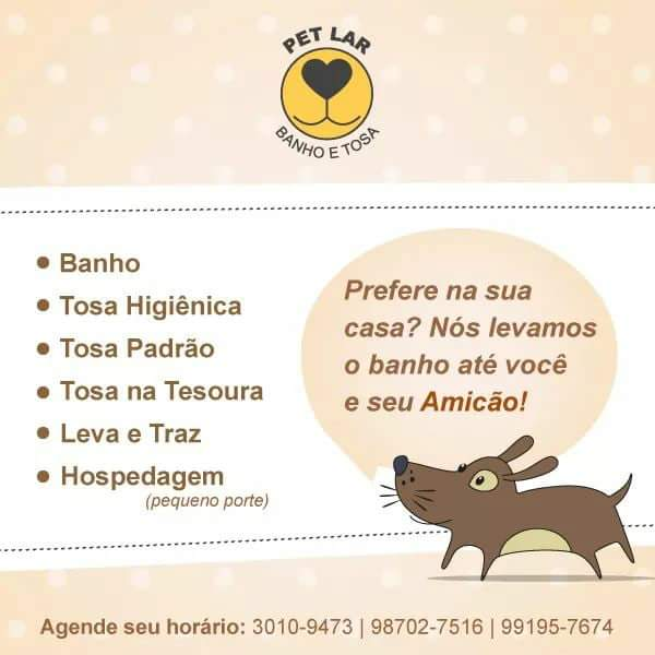 Banho, tosa e hospedagem para cães de pequeno porte é AQUI!