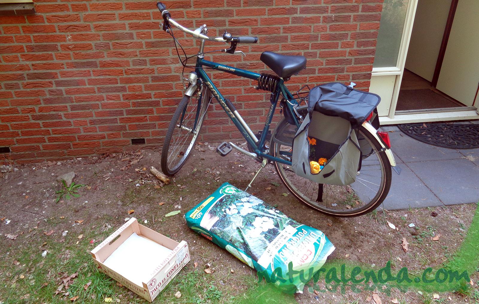 bici con plantas