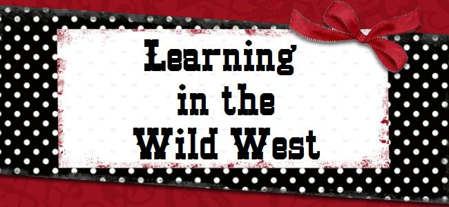 Learning in the Wild West