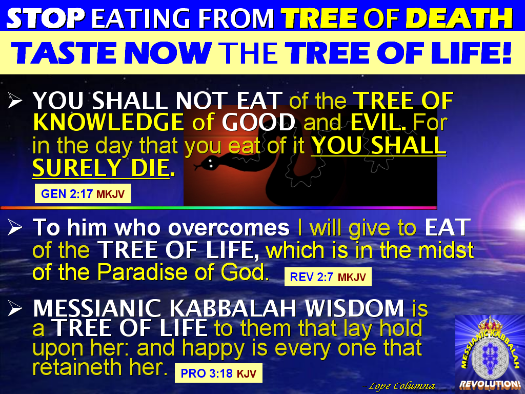 Tree of Life vs Tree of Knowledge of Good And Evil Tree of Knowledge of Good
