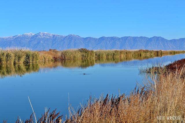 Bear River, Utah