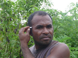 banana hunter Timor