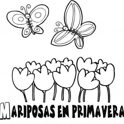 Dibujos de mandalas de mariposas para pintar | Colorear