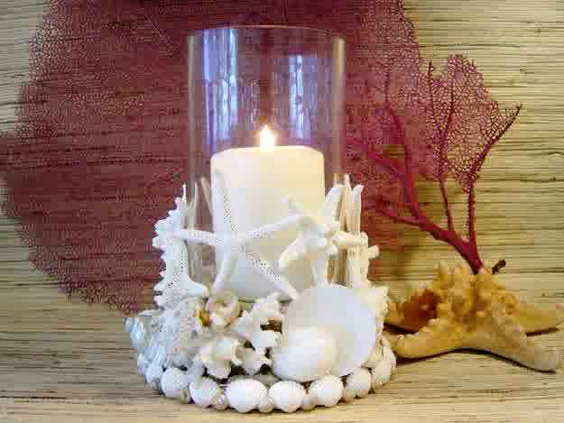 Seashell craft to make easy arts