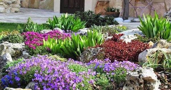 Arte Y Jardiner A Dise O De Jardines Plantas Bulbosas
