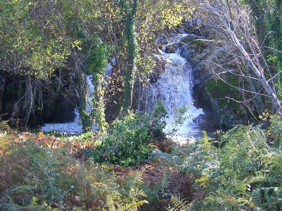 Entorno, cascada en arroyo