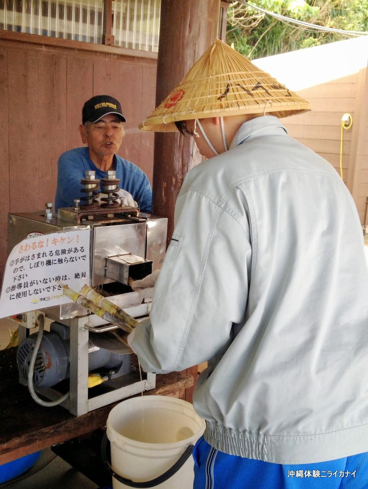 沖縄 恩納村 体験/観光 修学旅行 サトウキビ 収穫