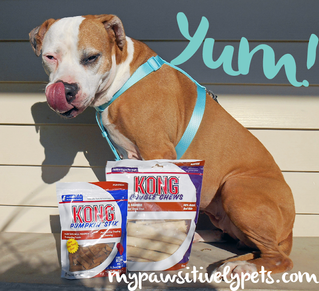 KONG Dog Treat Review and Giveaway