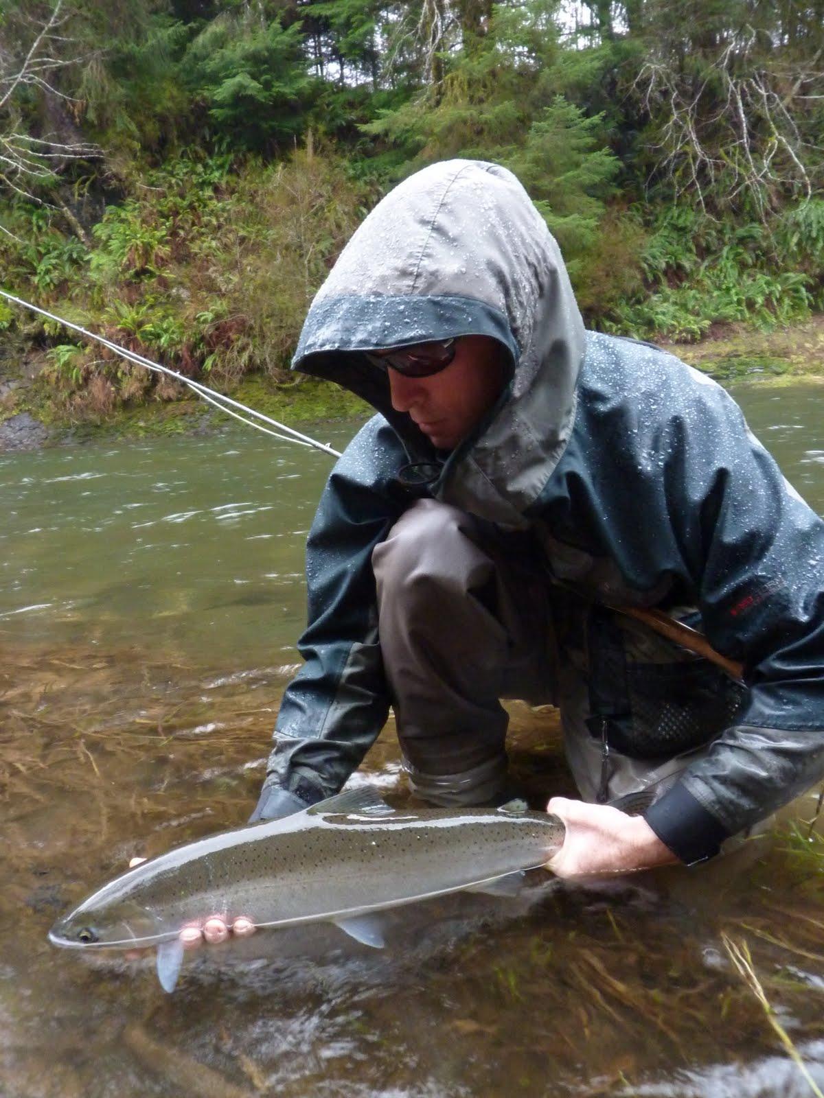 Brian marz 39 s fly fishing oregon blog steelhead fly for Steelhead fly fishing