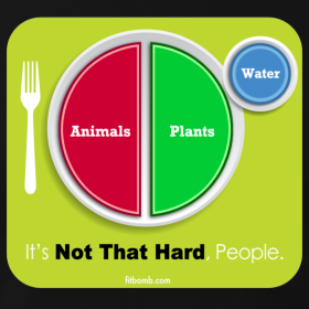 But I still have to deal with that gaping hole in my dinner plate if I\u0027m not eating grains... maybe we need a new plate. How about this one.  sc 1 st  The Healthy Cow & The Healthy Cow: Why You Don\u0027t Need Grains