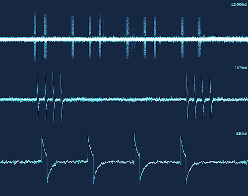 [Image: Three oscillograms of the same signal zoomed at different time scales. The first one spans 2.5 seconds and shows 10 bursts in a rhythmic pattern. The second one, 147 milliseconds, shows two bursts, and each seems to be composed of 4 short peaks. The third one, 25 milliseconds, shows one burst, which is clearly composed of 4 equally spaced spikes, resembling a square wave with a 20% duty cycle.]