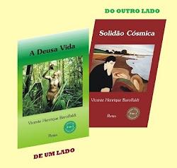 PARA OS AMANTES DA LEITURA, CHEGOU O NOVO LIVRO DE VICENTE HENRIQUE BAROFFALDI.
