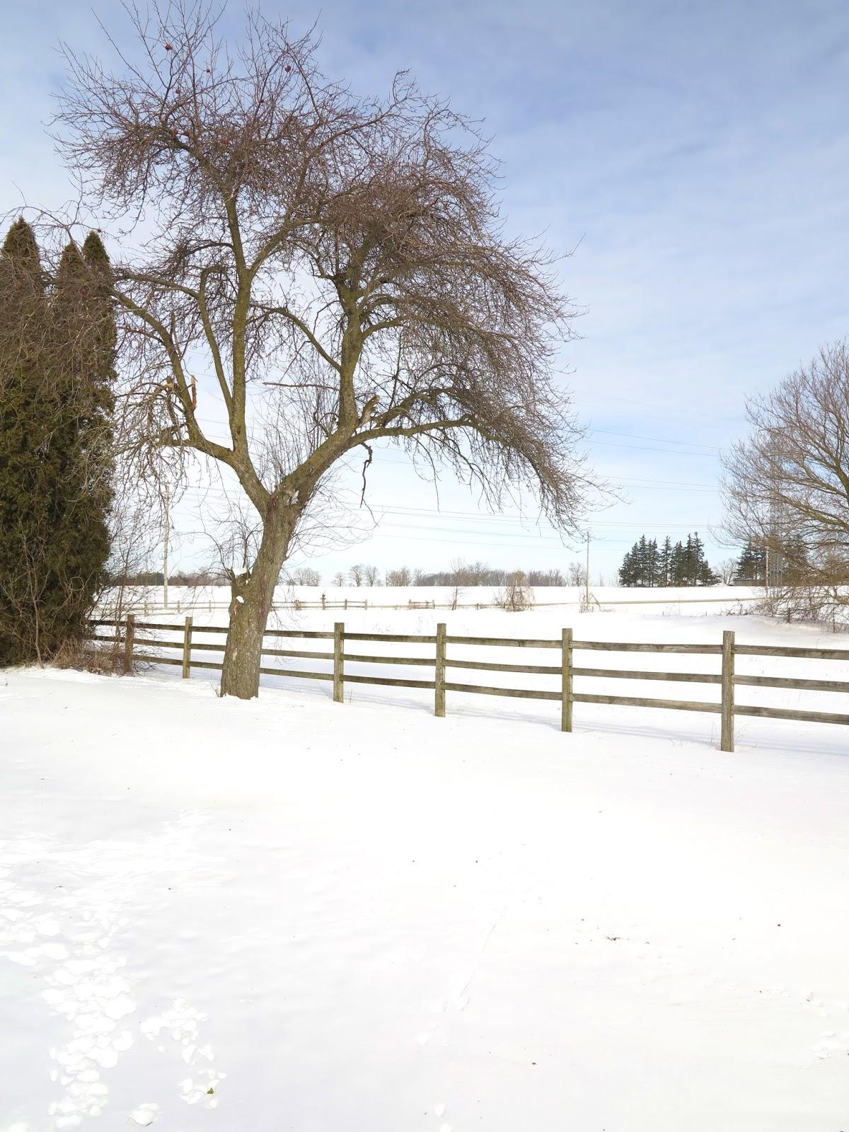 southwestern ontario farm