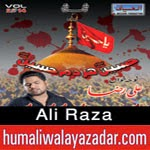 http://www.humaliwalayazadar.com/2014/11/ali-raza-nohay-2015.html