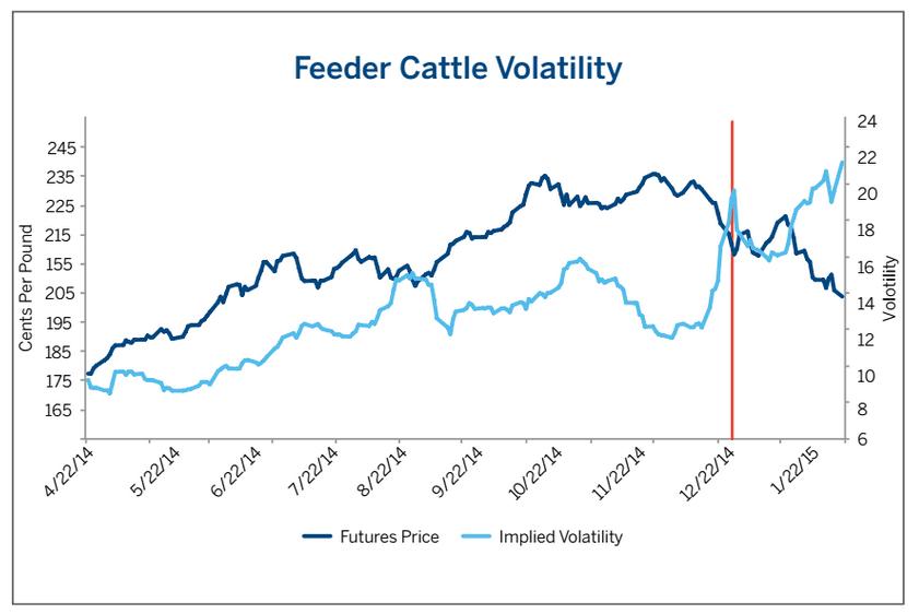 Feeder Cattle volatility volatilidad futuros terneros