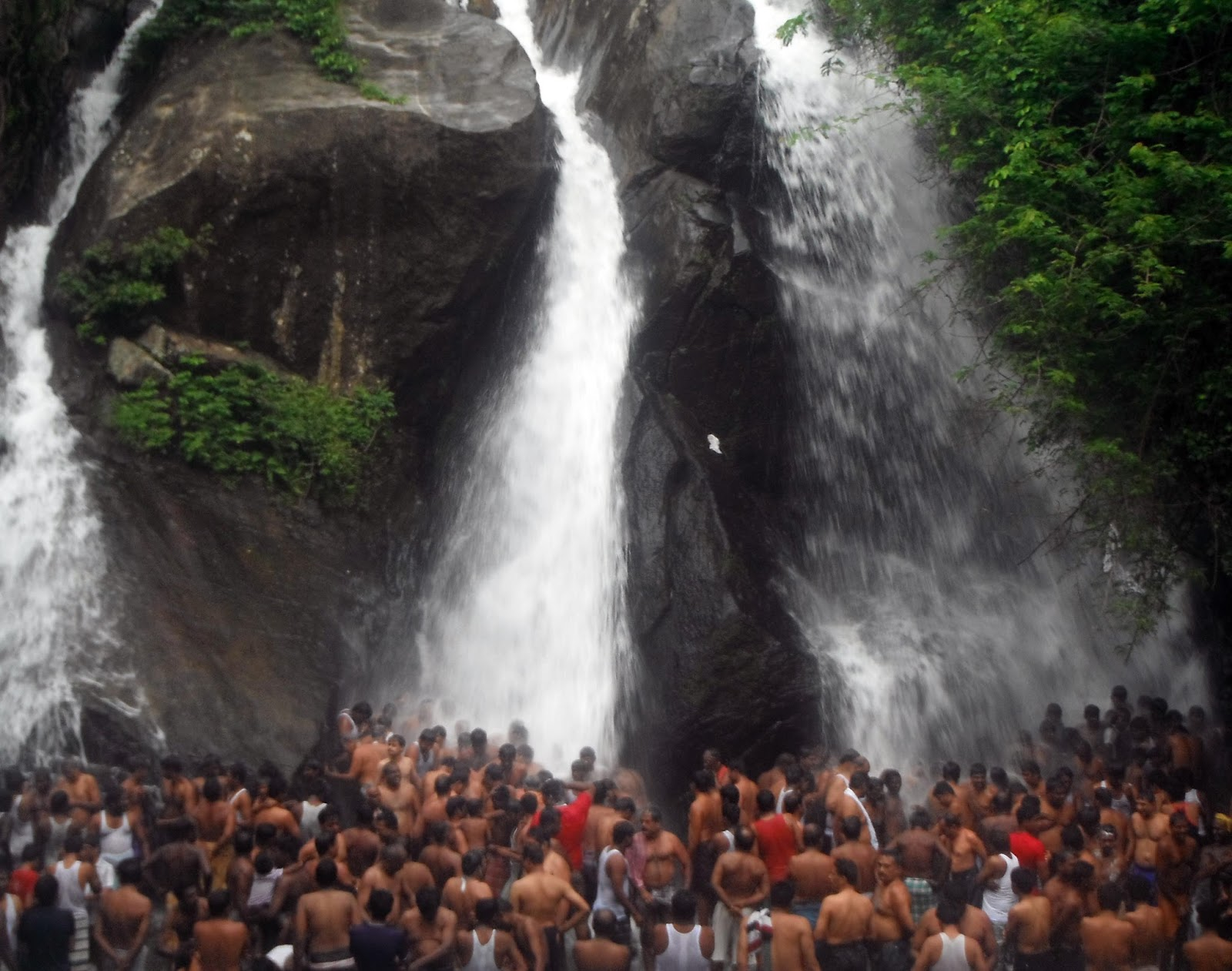 Courtallam India  city photo : Waterfalls and Durian | Courtallam, India