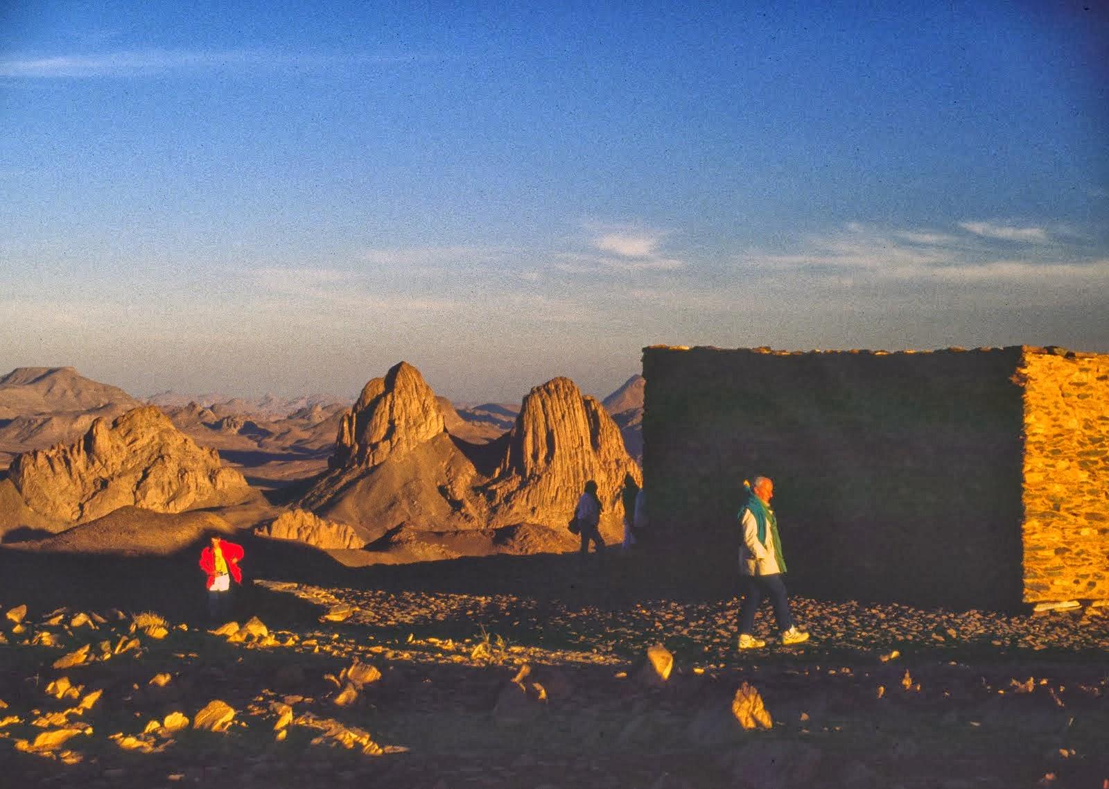 algeria 1989