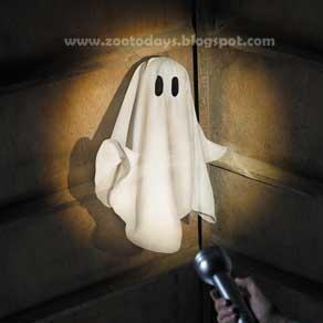 Penampakan Hantu atau Setan - [www.zootodays.blogspot.com]
