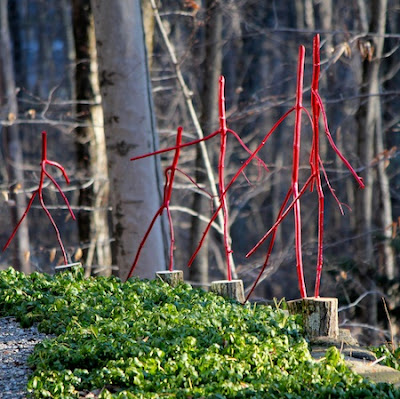 Red Dancing Sticks • DIY for the Winter Garden