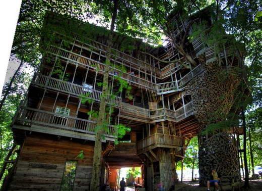 Rumah Pohon Terbesar di Dunia Milik Horace Burgess